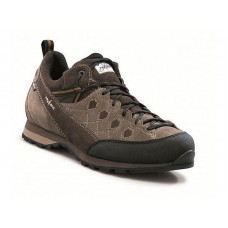 CRUX PLUS GTX (BROWN)